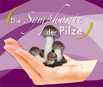 CD: Sinfonia dei funghi