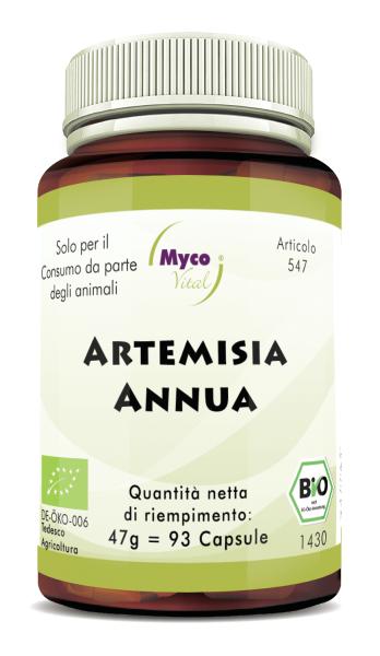 ARTEMISIA ANNUA - Annuale di artemisia, capsule organiche in polvere (547)