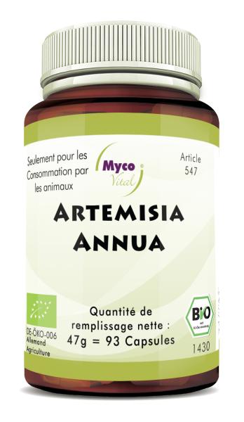 ARTEMISIA ANNUA - Armoise annuelle, capsules de poudre organique (547)