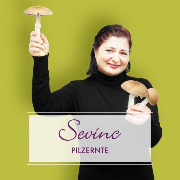 Pilzernte_Sevinc